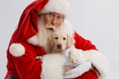 Santa20080008720080821